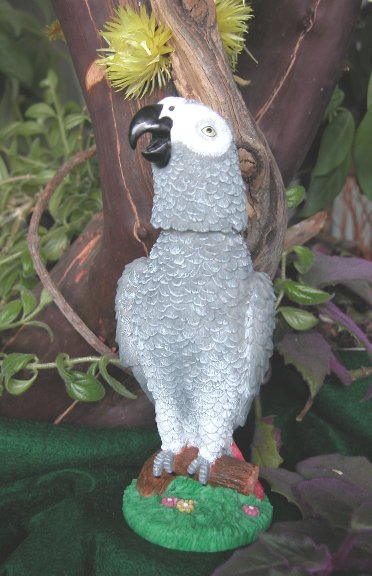 Click for larger photos of the Congo African Grey Bobblebird